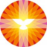 pkn-logo-pkn